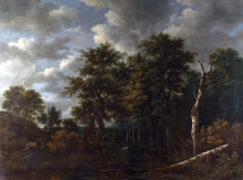 212/ruisdael, jacob isaackszon van - a pool surrounded by trees